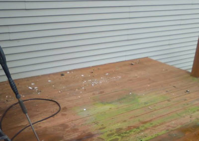 Moss & Mildew Stained Deck